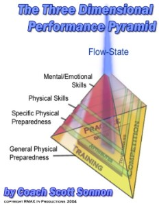 The Three-Dimensional Performance Pyramid Manual (PDF)